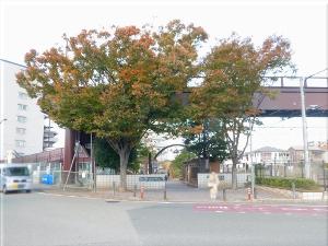 播磨町 であいの道 1