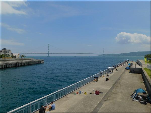 大蔵海岸 7