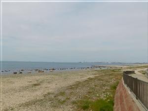 江井ヶ島海岸まつり 4