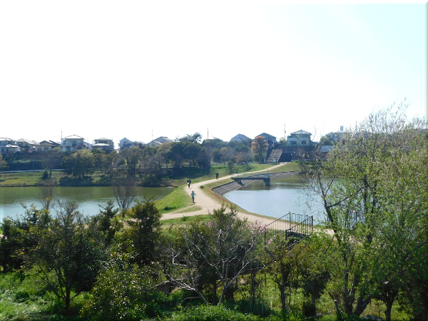 明石 ため池のある風景 2