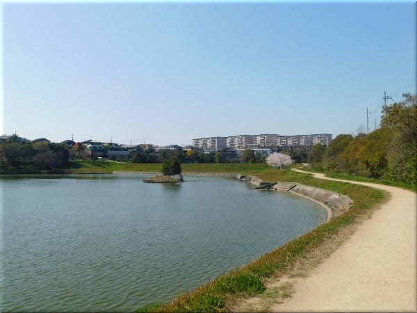 明石 ため池のある風景 4