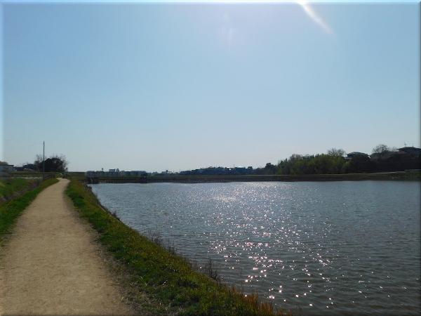 明石 ため池のある風景 5