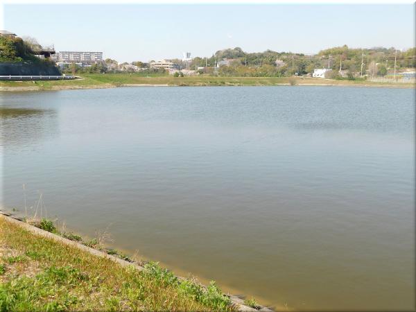 明石 ため池のある風景 6
