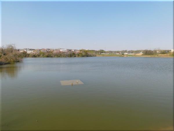 明石 ため池のある風景 8