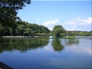 明石公園 剛の池