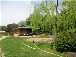 明石公園 武蔵の庭園の樹木屋敷
