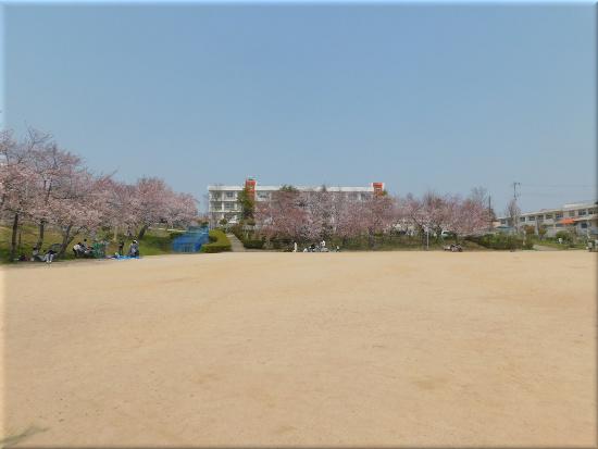 錦が丘中央公園 3