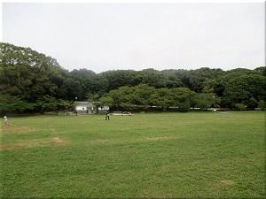 明石公園・千畳芝