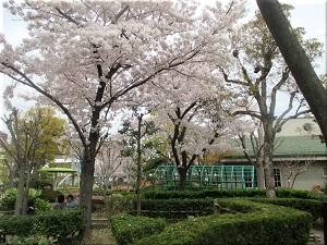 花と緑の学習園 2