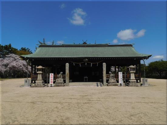 御厨神社 桜4