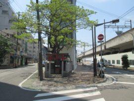 街角の小さな神社