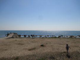 明石江井島酒館の前は海