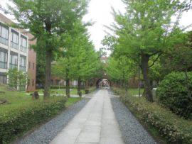 環境人間学部(姫路環境人間キャンパス)8