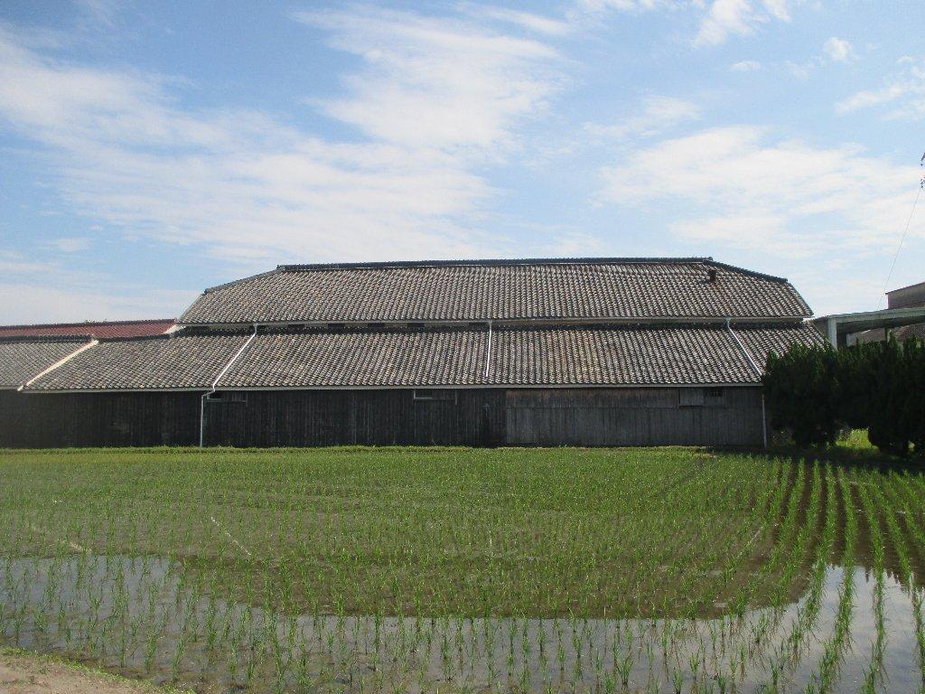 茨木酒造 2