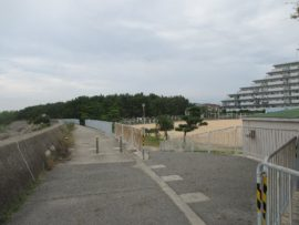 浜の散歩道 5