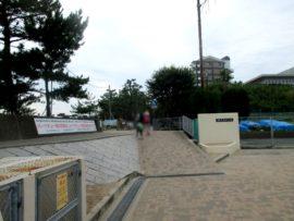 浜の散歩道 9
