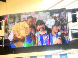 明石たこたこ祭り 16 (YENA☆)