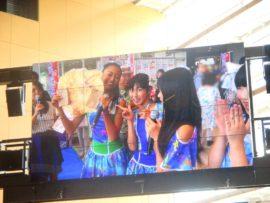 明石たこたこ祭り 17 (YENA☆)