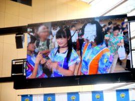 明石たこたこ祭り 23 (YENA☆)