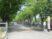 明石看護キャンパスの学園祭 「欅(ケヤキ)まつり」に行きました。